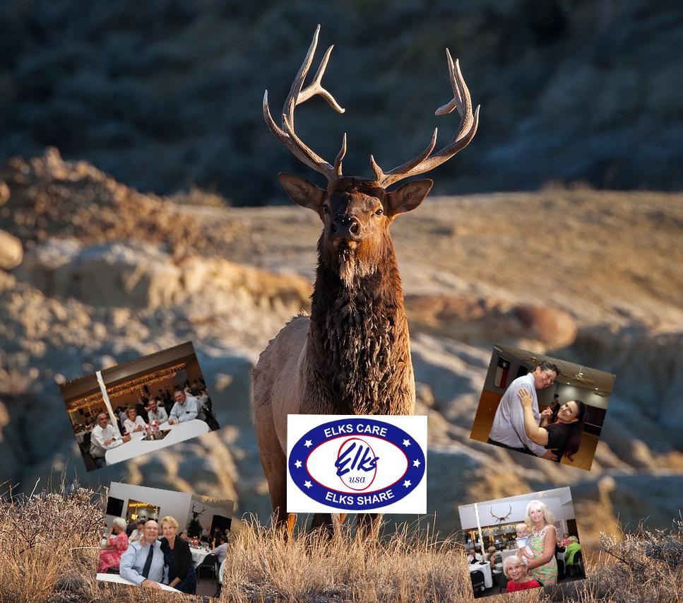 Elks-Banner-<A>.jpg