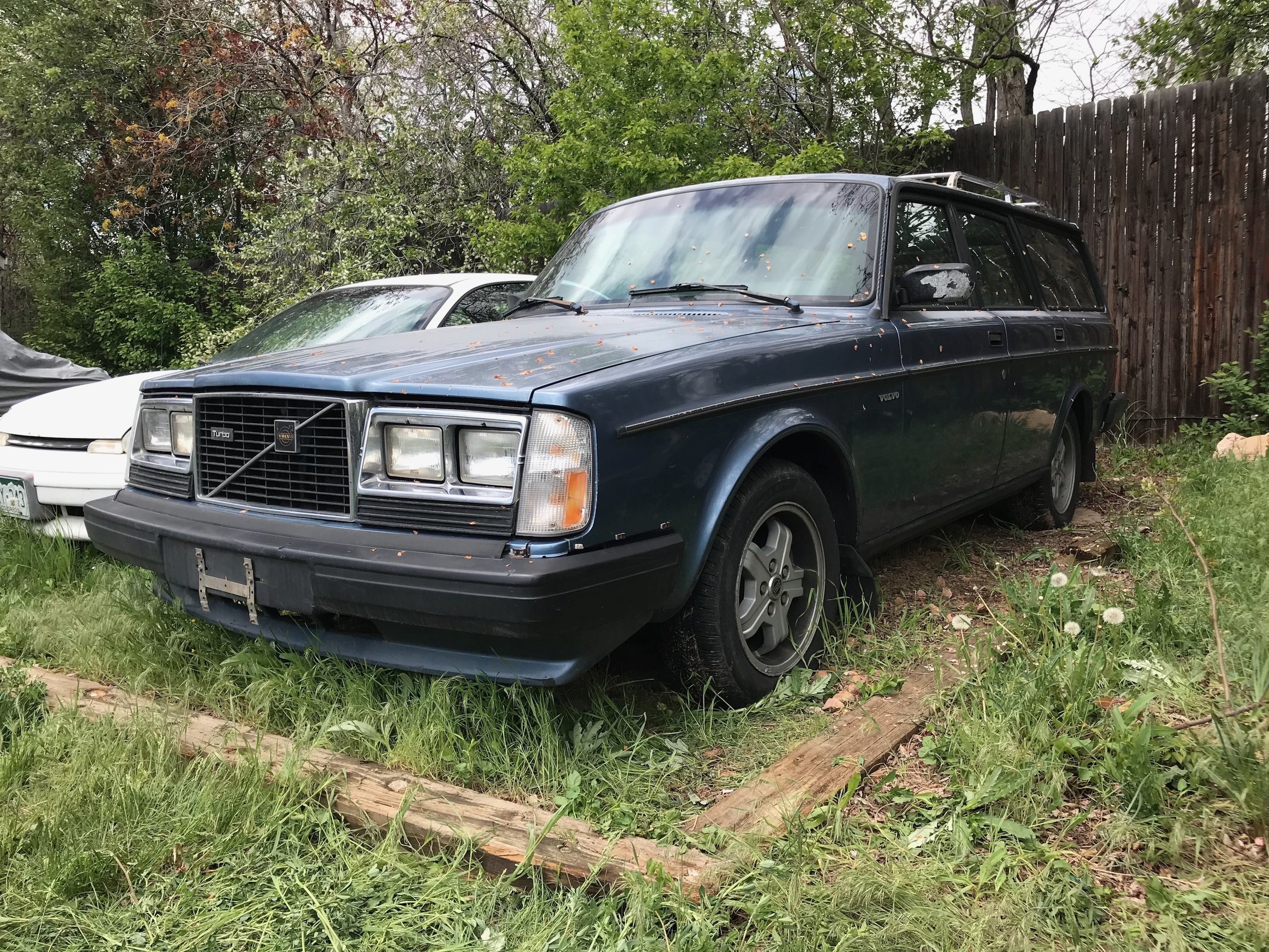Dahl - '84 Volvo 245 Turbo - IN TRANSIT TO US - MORE INFO COMING SOON!