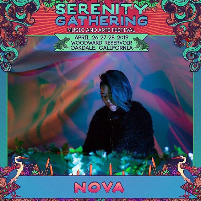 Catch me at the Heart stage Saturday/Sunday at 3am after Kaminanda. Samantha Sage will be performing a few songs with me. Hope to dance with you! ⚡️ ⚡️ #serenitygathering2019 #nova #housemusic #pioneerdj #void #musicfestival #art #healing #california #camping #conscious #curator #eventproducer