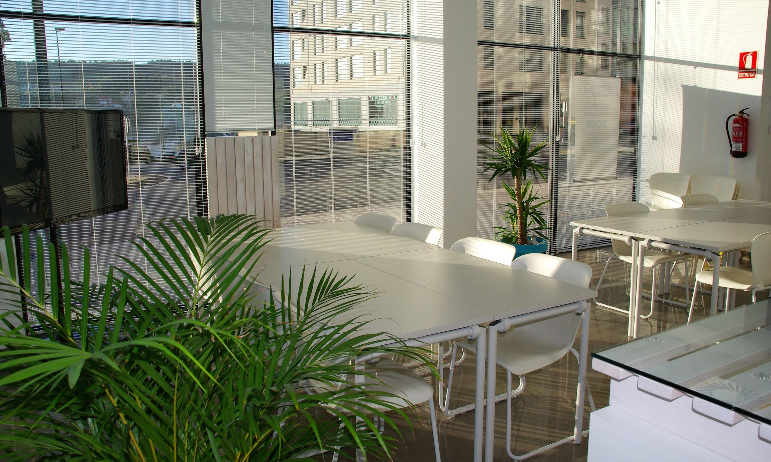 OFFICE PLANTSCAPES -