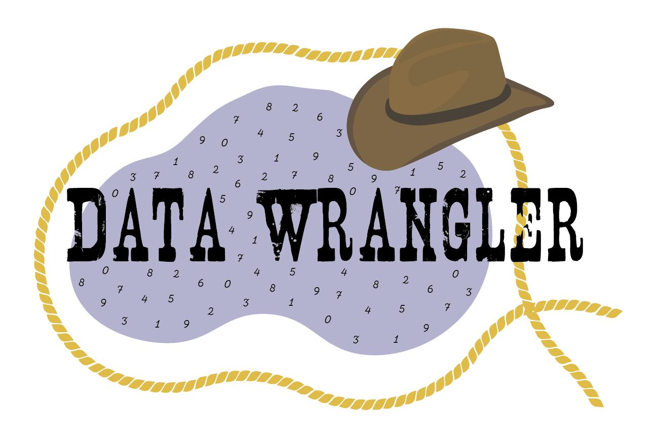 Data Wrangler.png