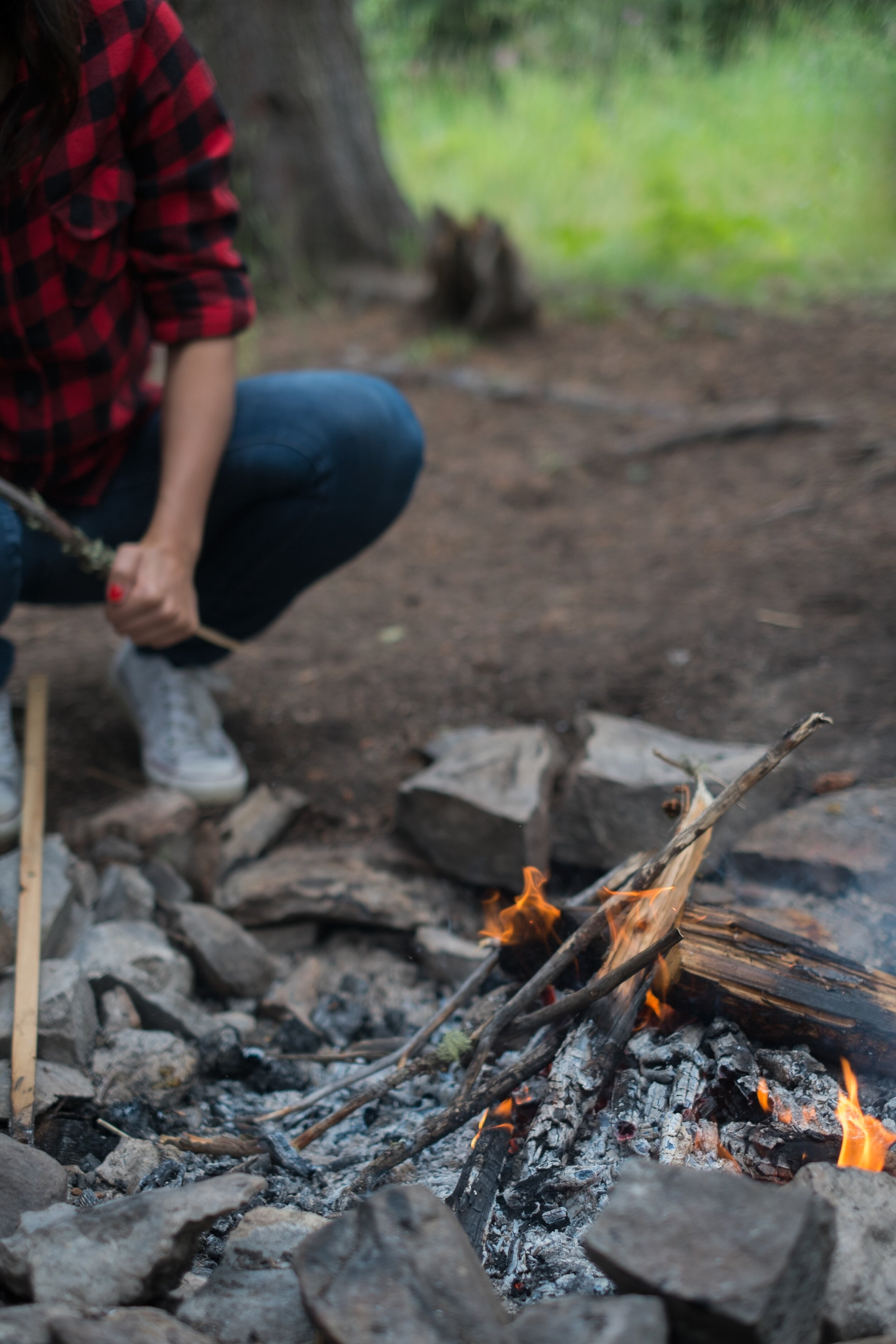 campire_thedailywild_free_activities_for_kids