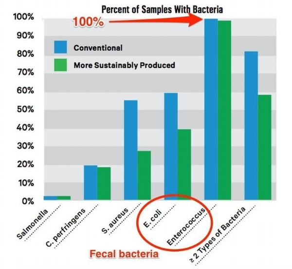 Consumer Reports regarding Fecal Bacteria in Beef