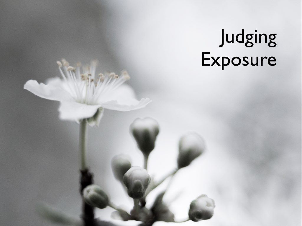 judging exposure images.001.jpeg