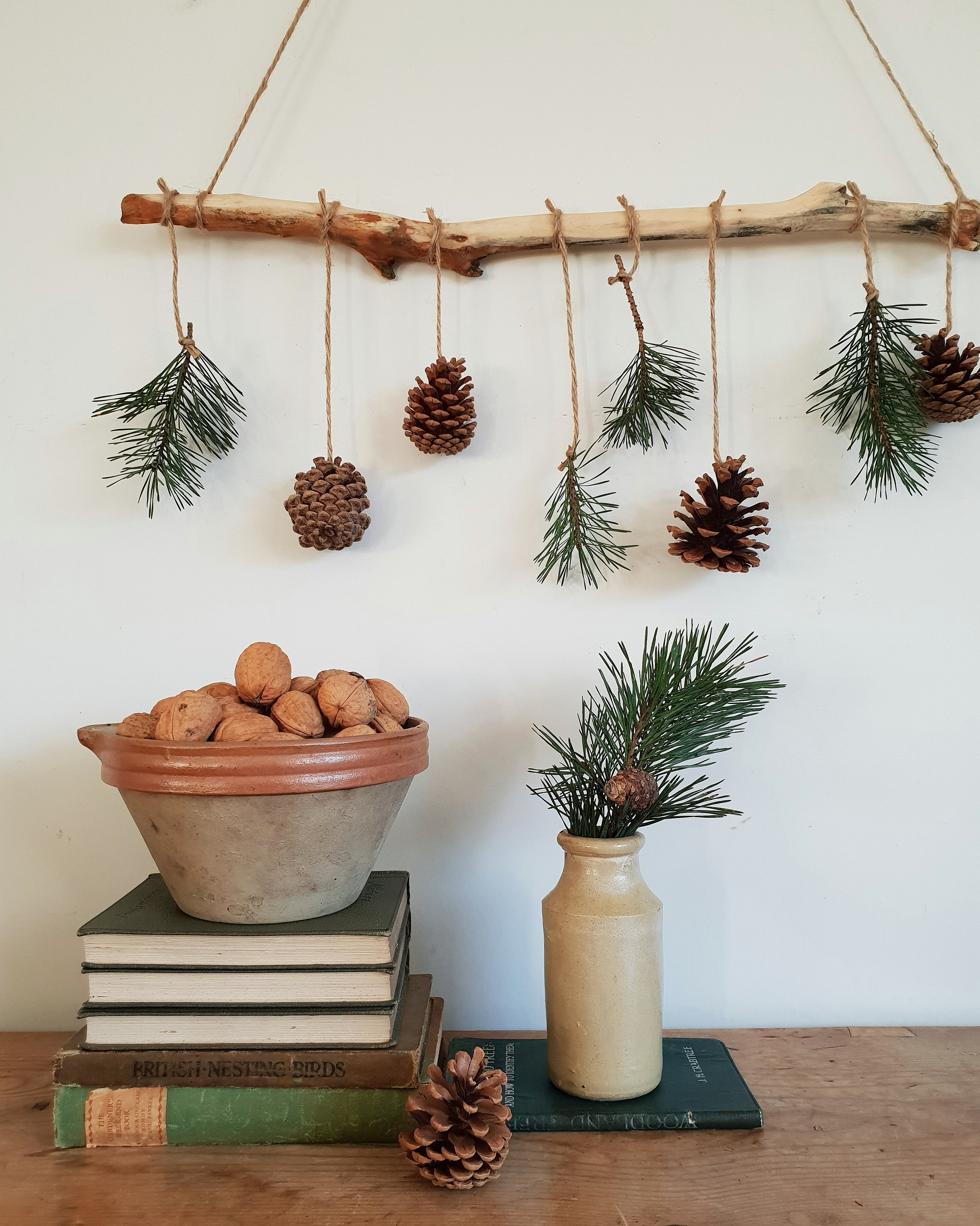 fircones and walnuts hanging .jpg