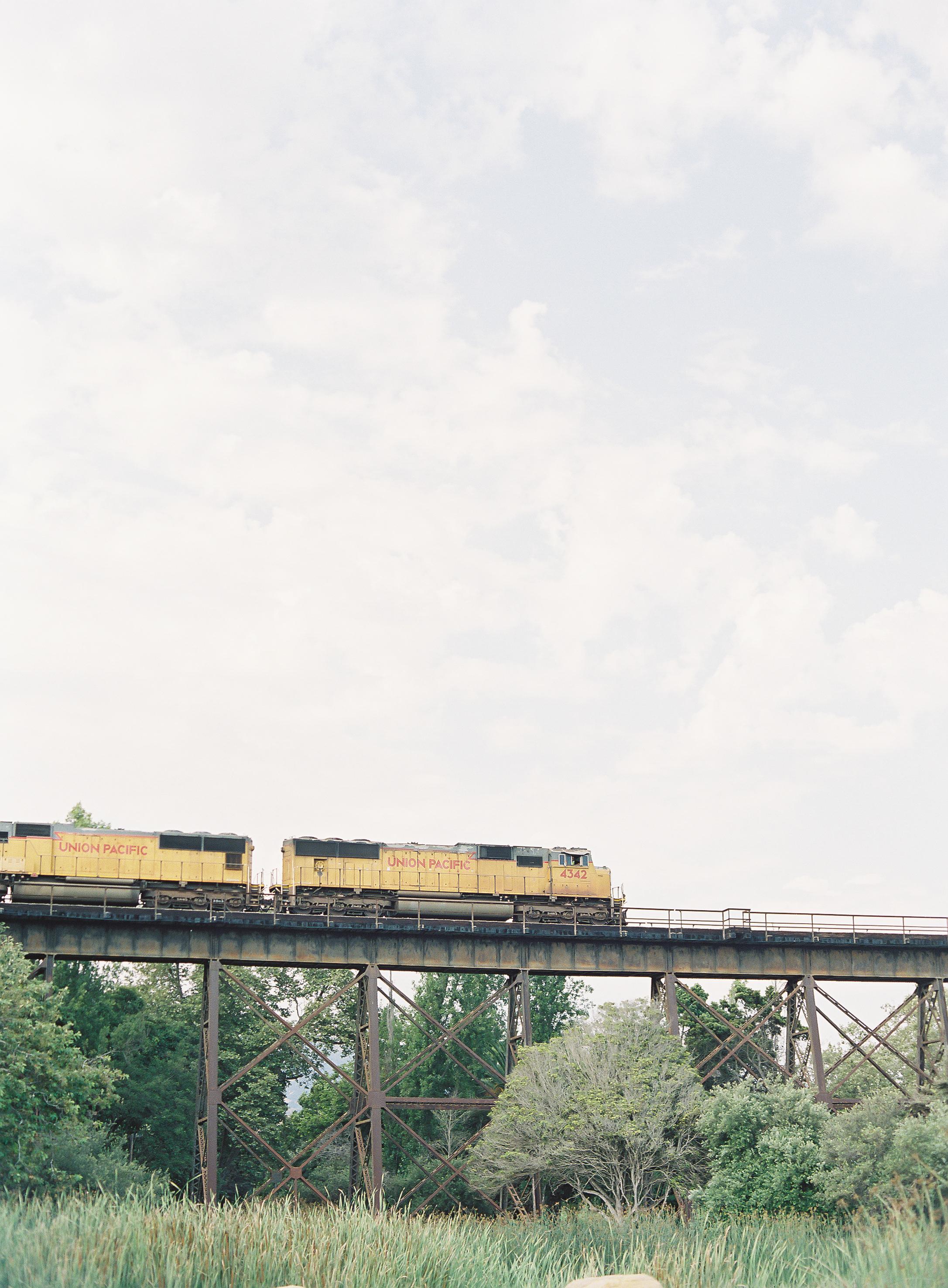 jagolinzer-981.jpg