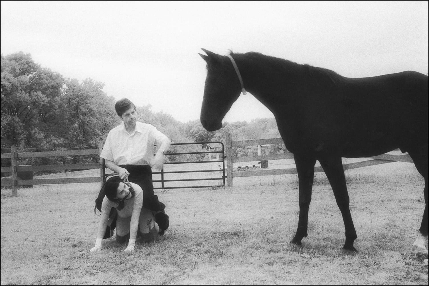 Horse Farm, 1998