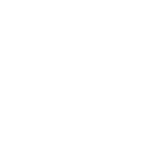early bird ticket.png