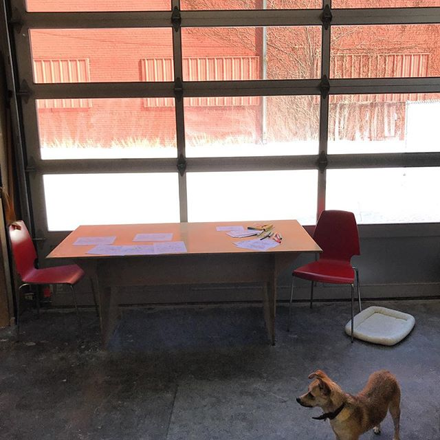 Academy vibe this afternoon: snowy courtyard, sun, making up @academy_spray_wall problems, and a cool pup. Nice.