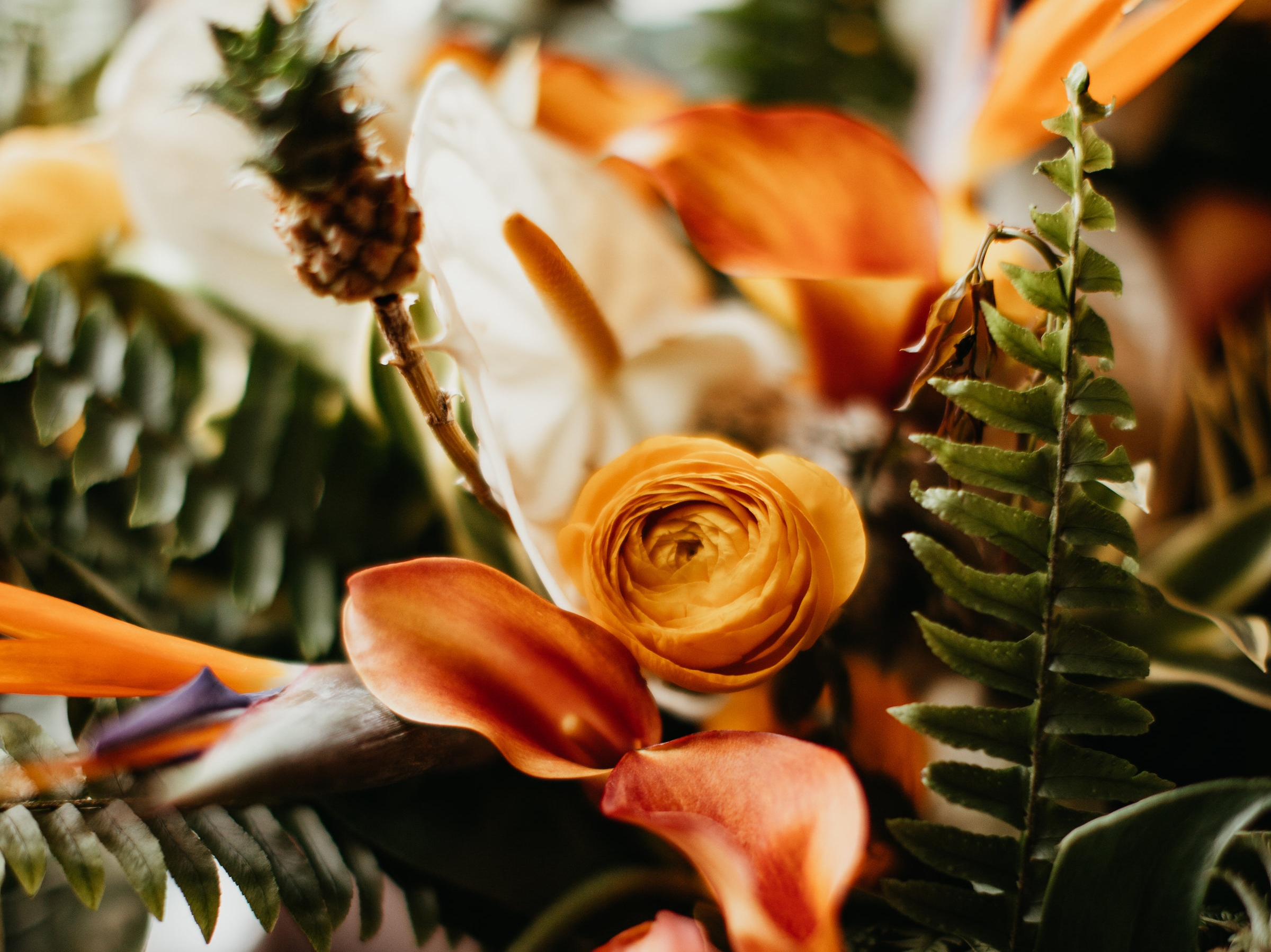 Chris and Carley wanted of a vibrant, tropical wedding day to tell their story that began with a groom in the Caribbean, and a bride that just loves the pineapple aesthetic! Bird of paradise, baby pineapples and other exotic florals brought these bouquets, boutonnieres, and centerpieces to life. #floraldesign #weddingflorals #weddingflowers #virginiawedding #virginiabride #virginiaflorist
