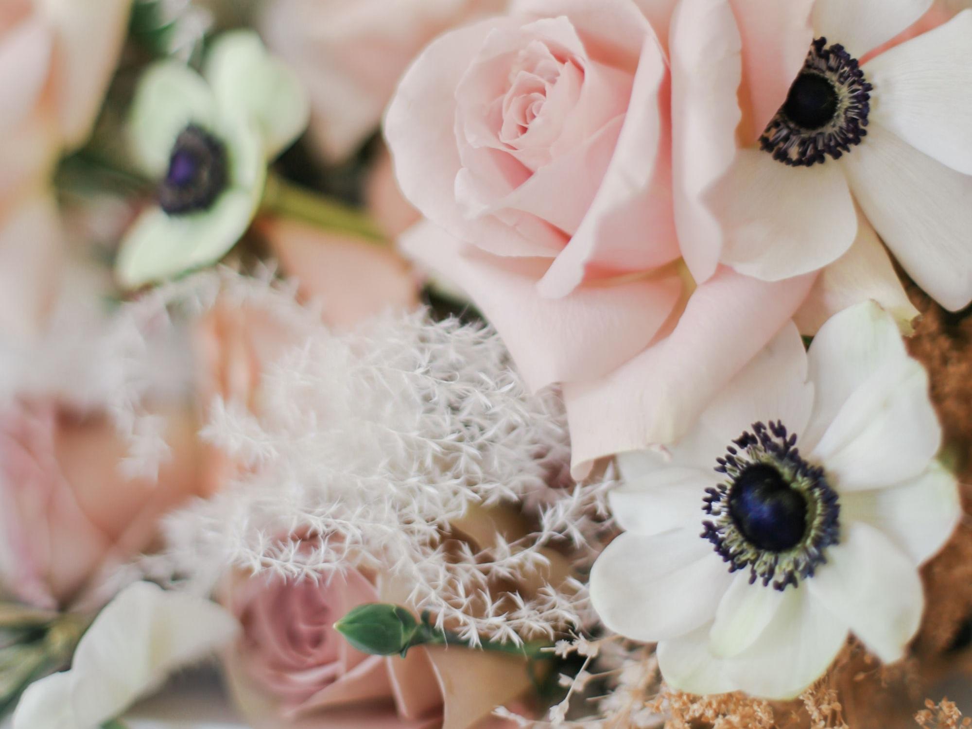 jennifer-hayward,roanoke-wedding-photographer,roanoke-maternity-photographer-4.jpg