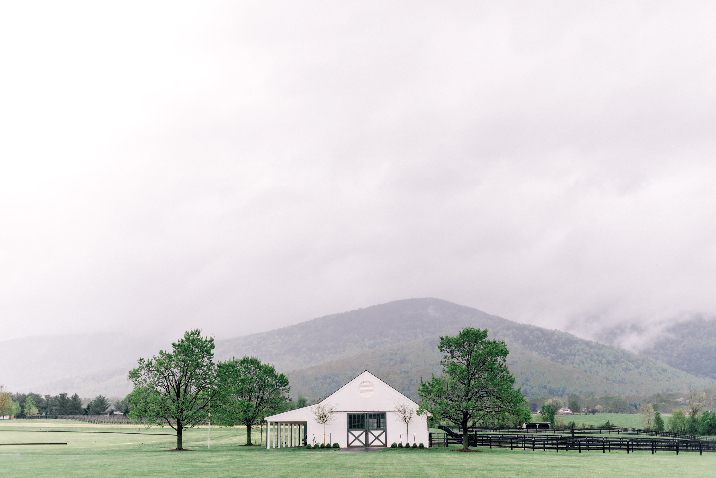 Anna's love for the Blue Ridge Mountains was celebrated by creating a one-of-a-kind ceremony backdrop using reclaimed barn wood covered with lush greenery. Eucalyptus and muted florals perfectly complimented the soft blues of the bridal party and rainy sky.