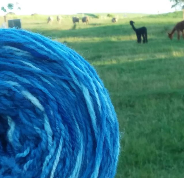 I really love this blue handspun, hand-dyed yarn I made the sweater with. This cake was from the same dyebath as the skeins I made the sweater with. However, it sat at the top of the pot, so it didn't end up as dark.