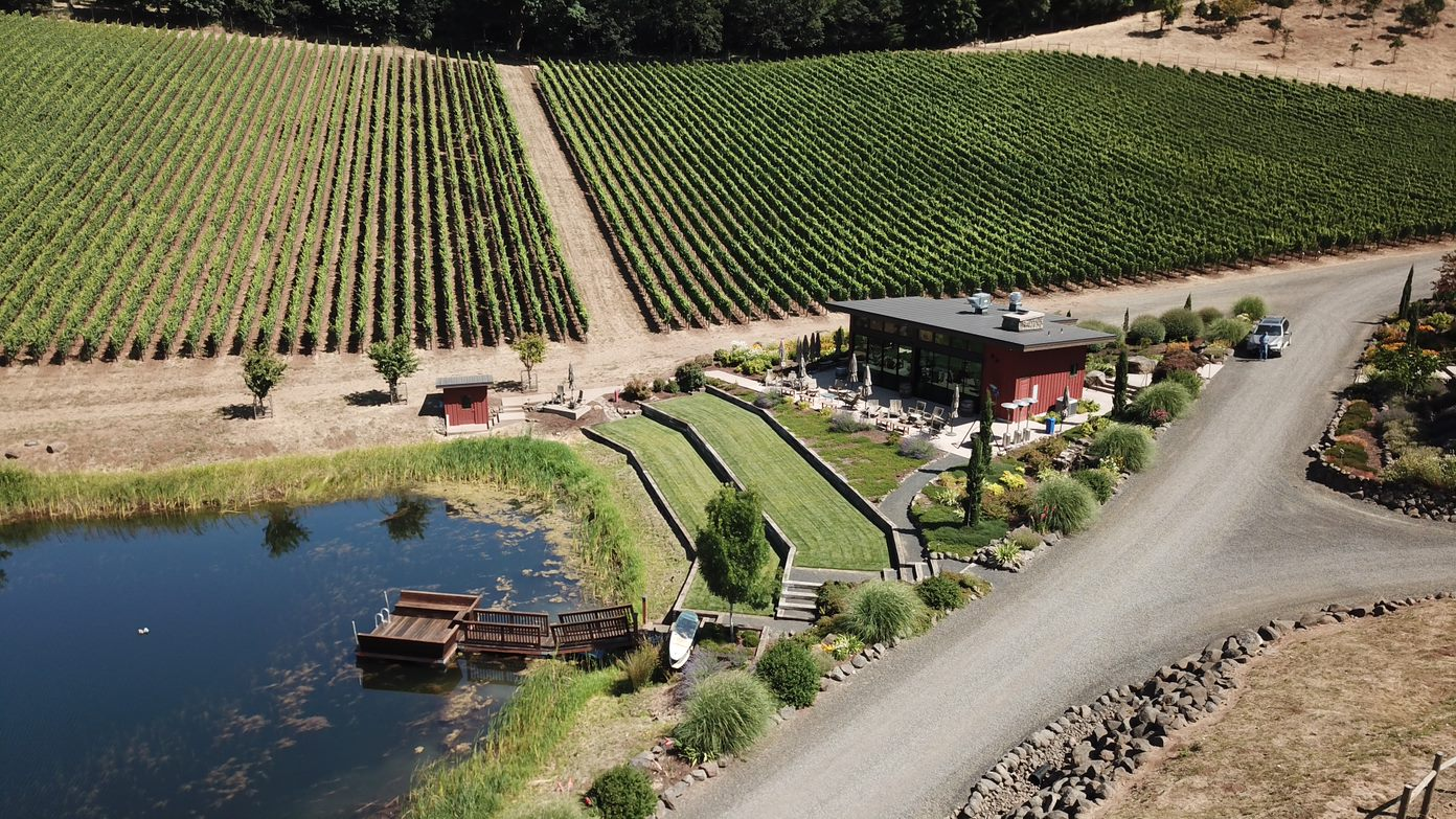 Drone shot of Pond Pavilion Vineyard (1).jpg