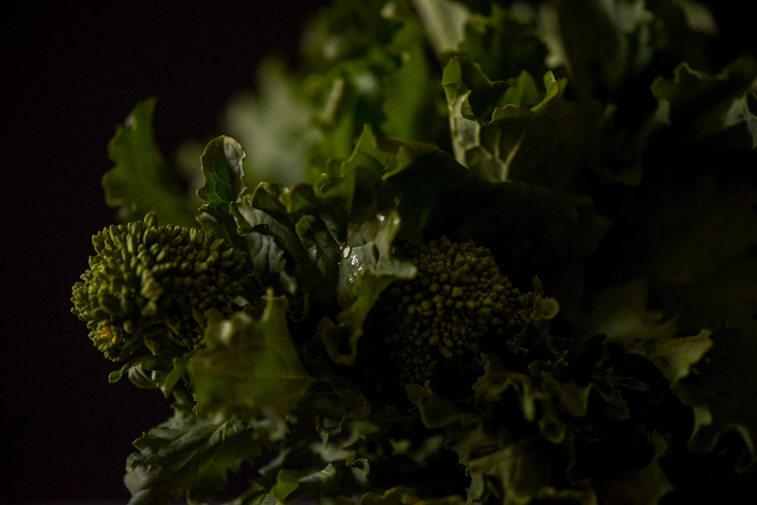 broccolini-9630.jpg
