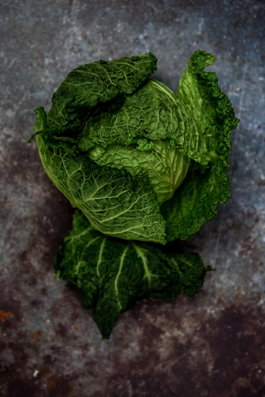 cabbage-9280.jpg
