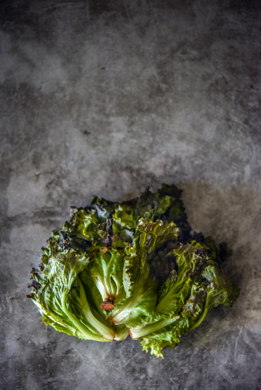 Baby-Lettuce--2.jpg