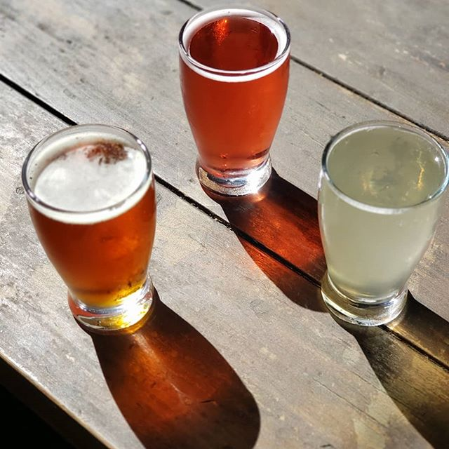 Trivia Wednesday night w/ @sunsettrivia from 7-9pm. We  have 3 brews on special for $5! - from left to right: @bnsbrewinganddistilling - Starvin' Marzen - Marzen/Oktoberfest, @stemciders - Hibiscus Session - Apple Cider w/ Hibiscus, & @seekoutseltzer - Cucumber Juniper - Hard Seltzer. Assemble your drinking crew and join us!  #sunsettrivia #thinkdrinkwin #pacificbeach #pb #baysidelanding #drinkbeer #indiebeer #sd #beer #sdbeer  #drinkindiebeer  #sandiego #crownpoint #wine #foodie #trivia #trivianight #knowledge  #sandiegofoodies #sandiegoeats  #sandiegorestaurants #sdeats #sdbrewers #visitsandiego #discoverpb #wednesday #humpday #dogfriendly #familyfriendly #sometimesyouwanttogowhereeverybodyknowsyourname