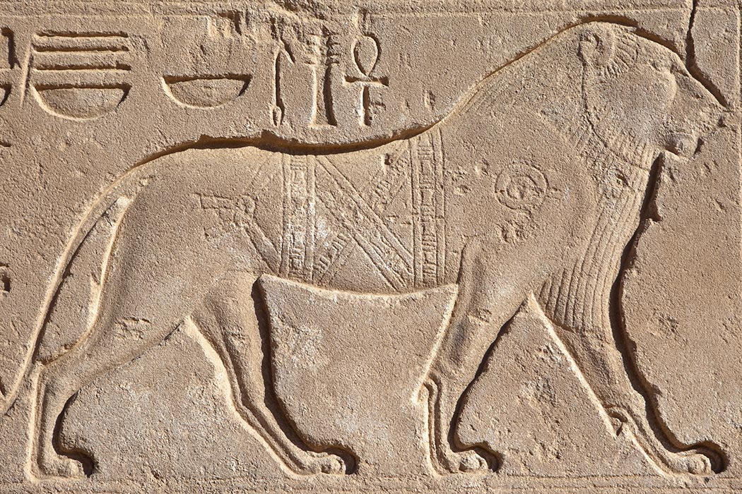 A lion hieroglyphic from ancient Egypt