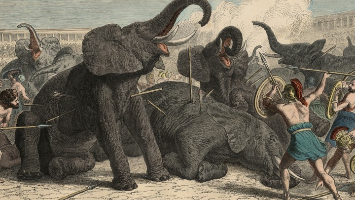 A depiction of 'the wild hunt' performed in the Colosseum in Rome.  Brutality towards animals as a form of entertainment.