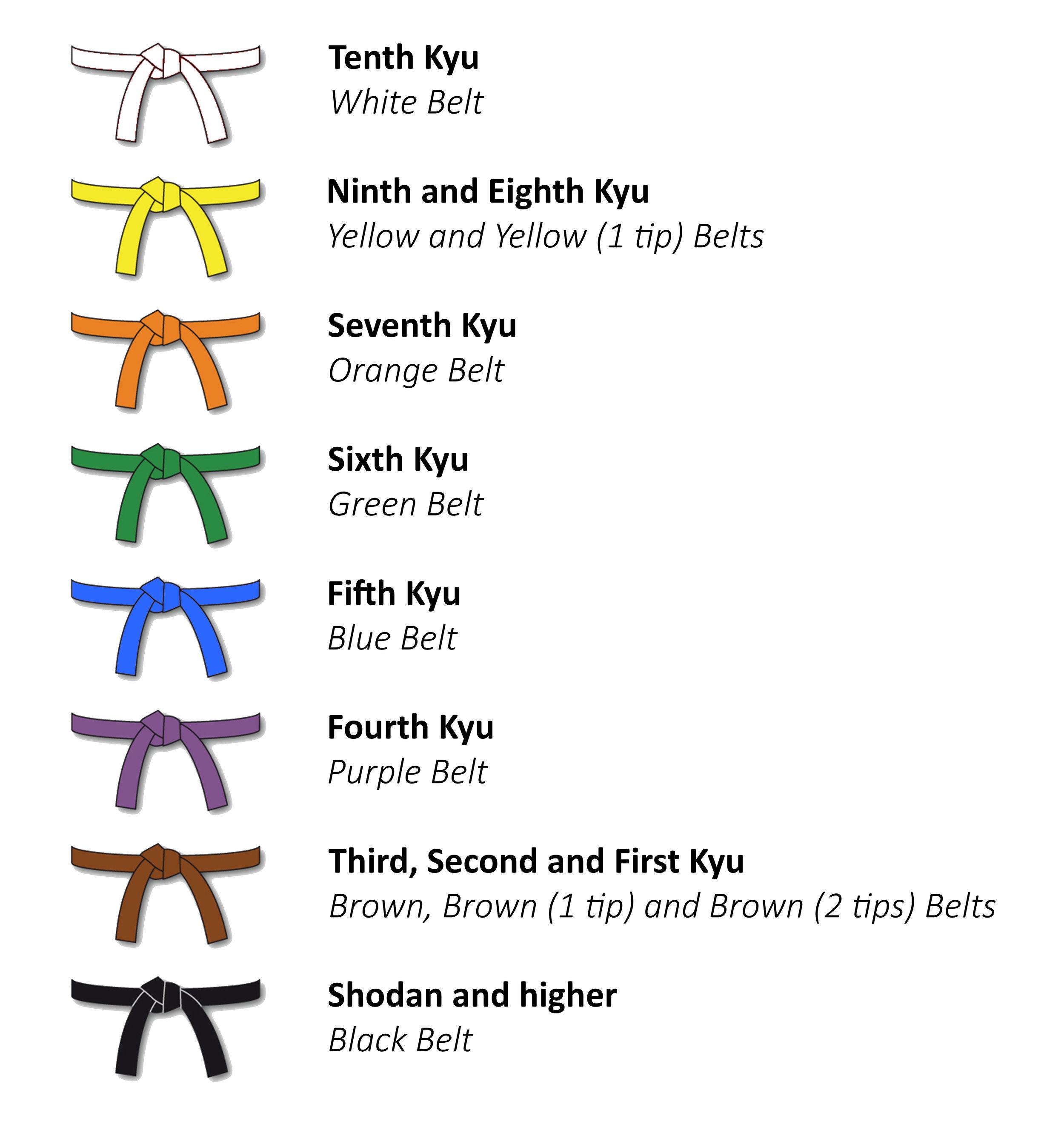 STKA's Belt System
