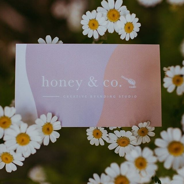 Eeeeeee ohmygosh! I've received some of the photos from my brand shoot with @henhousephotoco and I'm so over the moon! Get ready for some very special shots to be sprinkled throughout this feed! ⠀⠀⠀⠀⠀⠀⠀⠀⠀ I never actually shared the final printed product of my business cards: so here they are folks! So glad I held off on photographing them 😊️ 🌿 📷