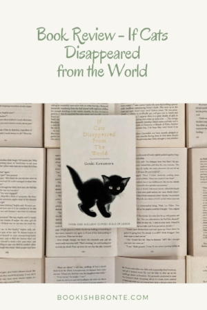 if cats dissappeared.jpg