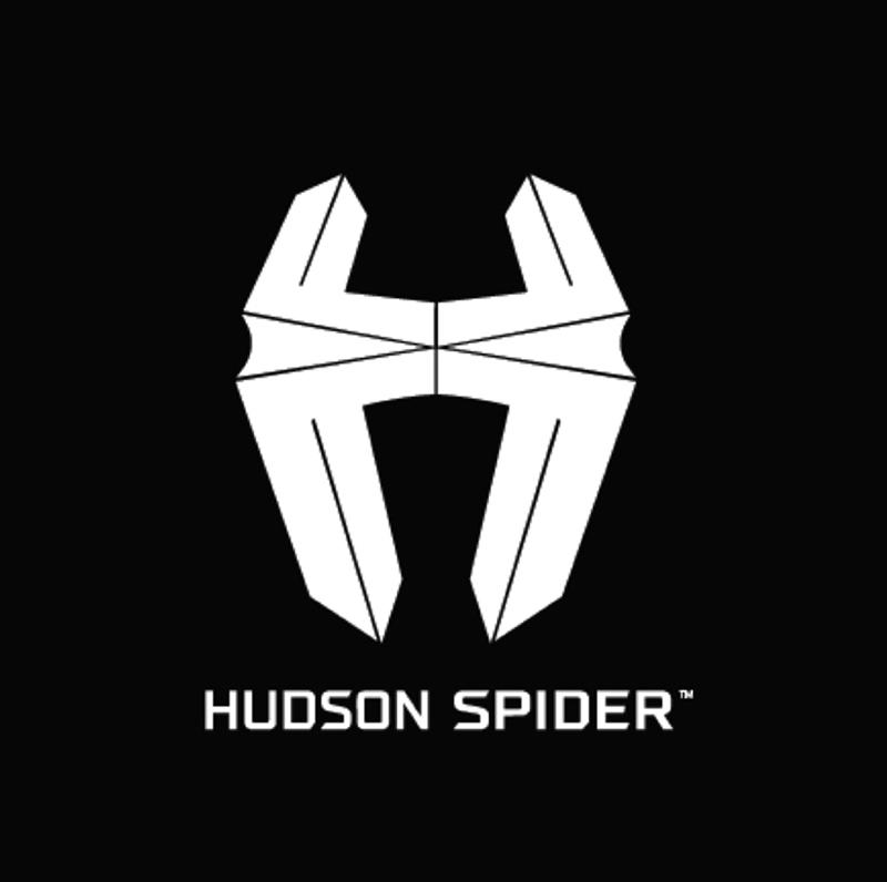 Hudson-spider.jpg