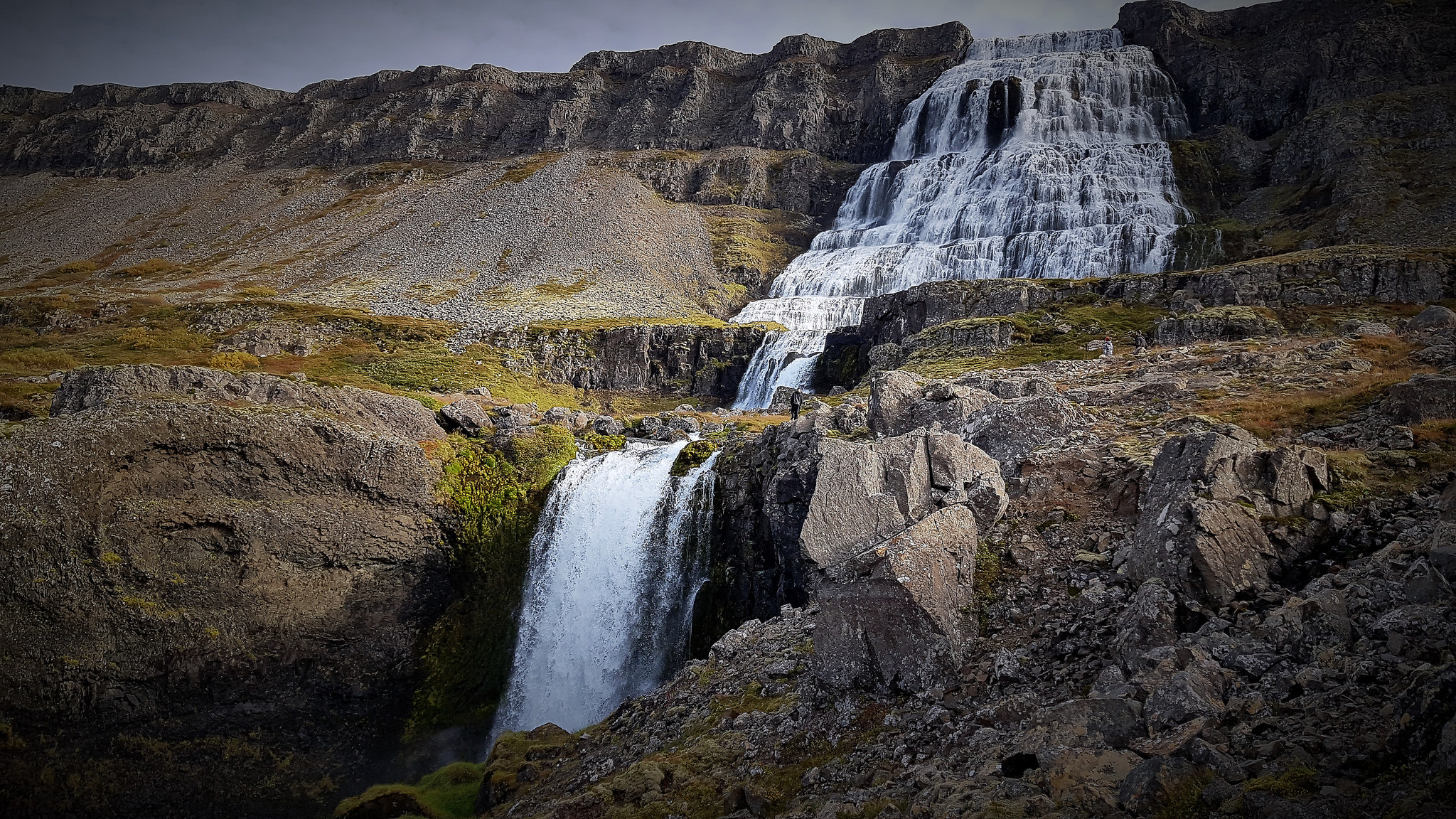 facilitator services - Is your company looking for facilitator services in Iceland. We specialize in asset management and are at your services