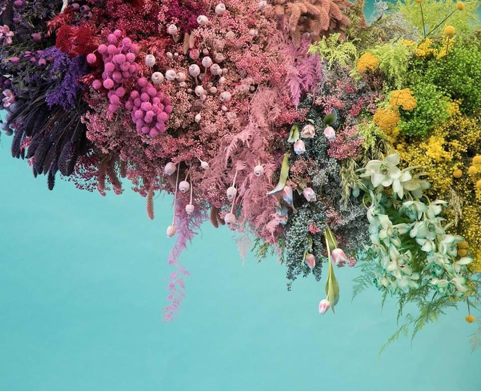 Image taken from  McQueens Flower School