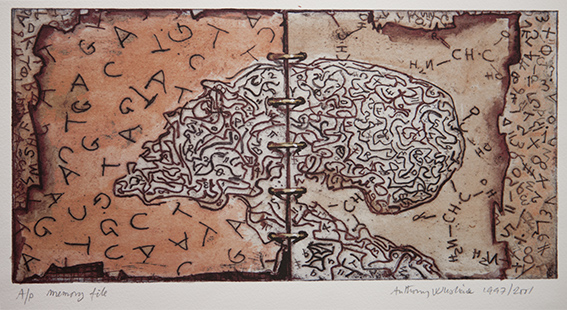 Memory File  1997-2001, 15 x 28.5 cm, hand tinted etching