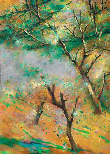 481M_Early_Summer_Treescape.jpg