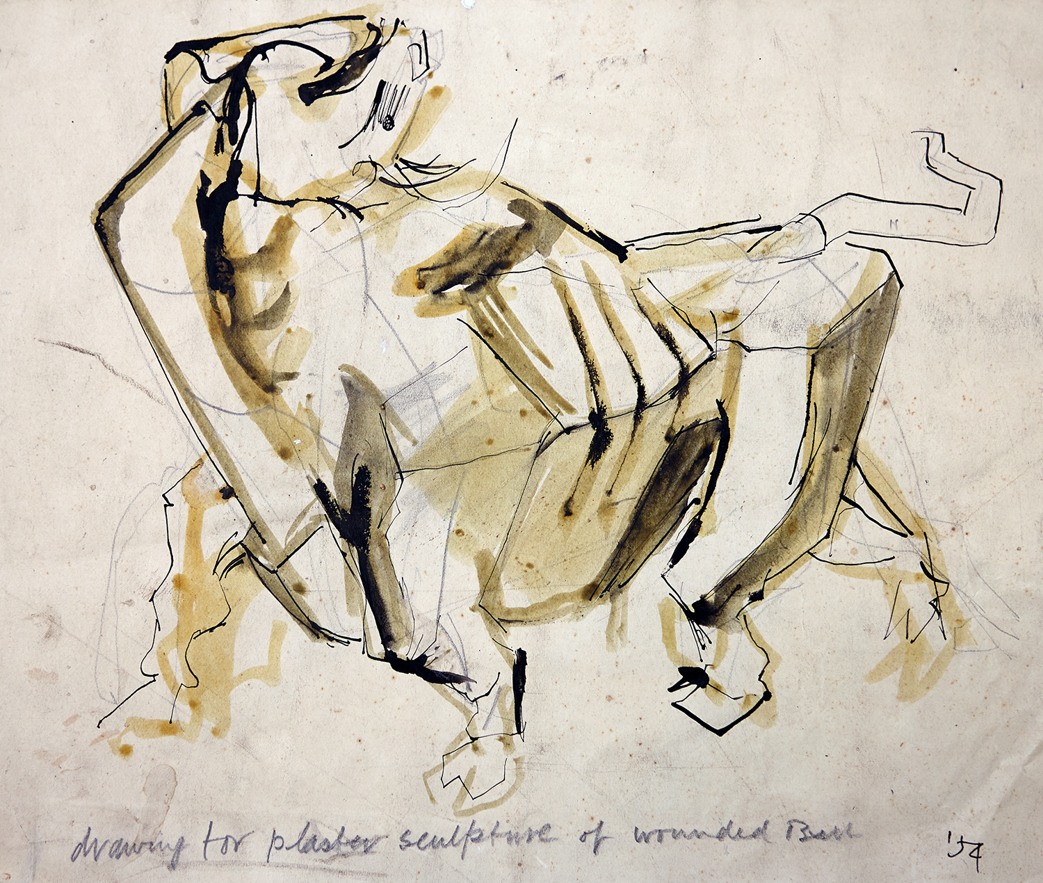 Drawing For Plaster Sculpture Of Wounded Bull  1954, 25 x 34.5 cm