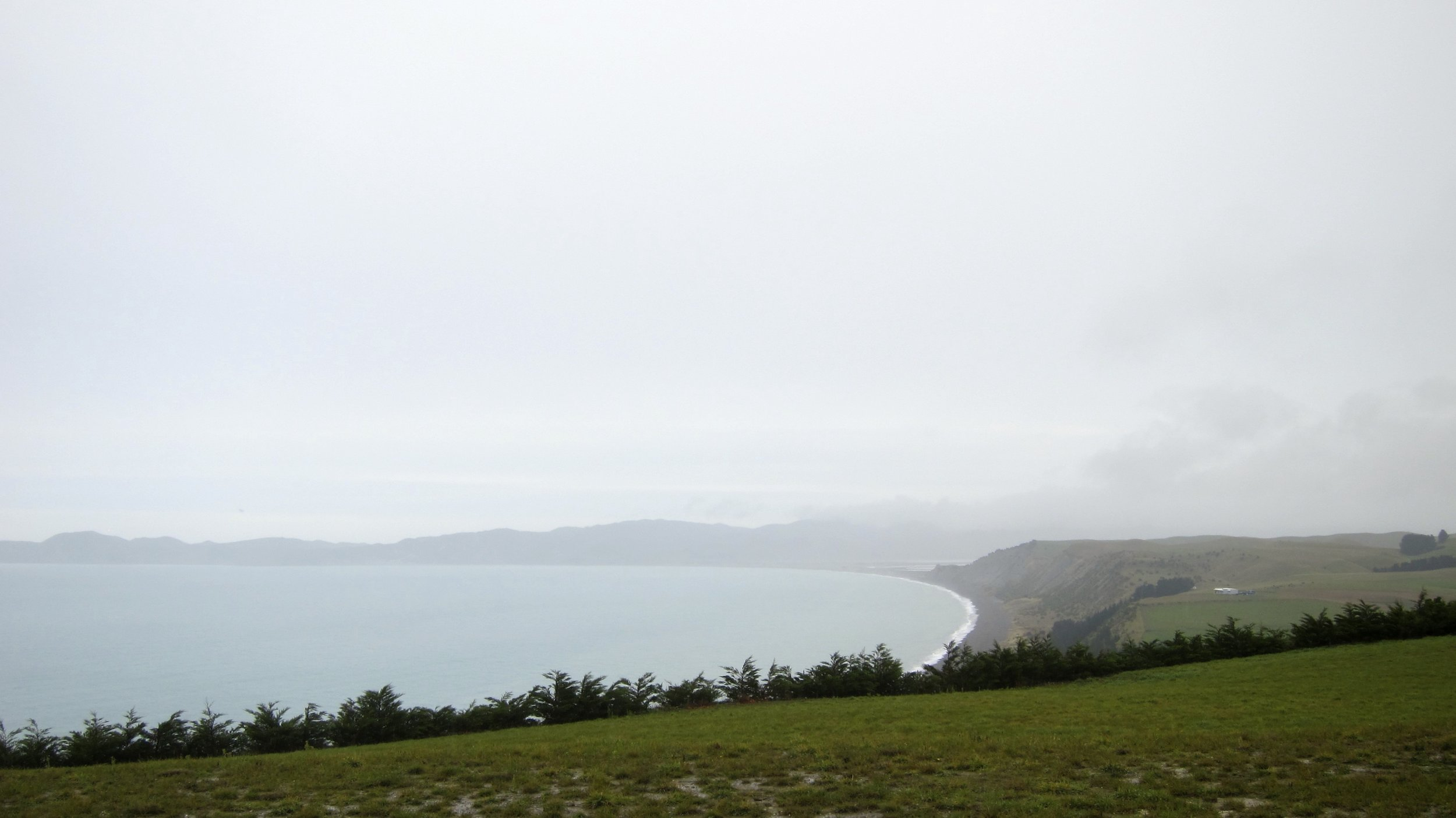 Yealands vineyards, as far as the eye can see (even on a cloudy day).