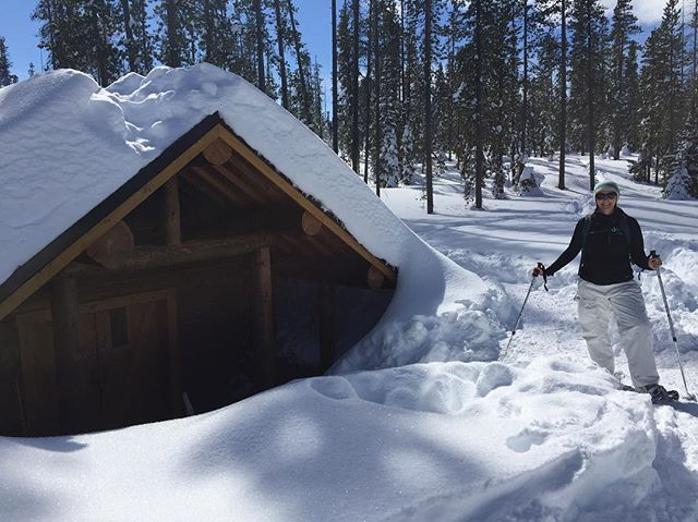 So much snow that the Swampy Lakes shelter is basically now an igloo. Long week of shoveling made a tiny bit better by blue sky snowshoeing today!