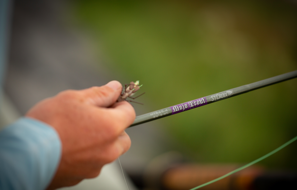 St. Croix MOJO TROUT fly rod