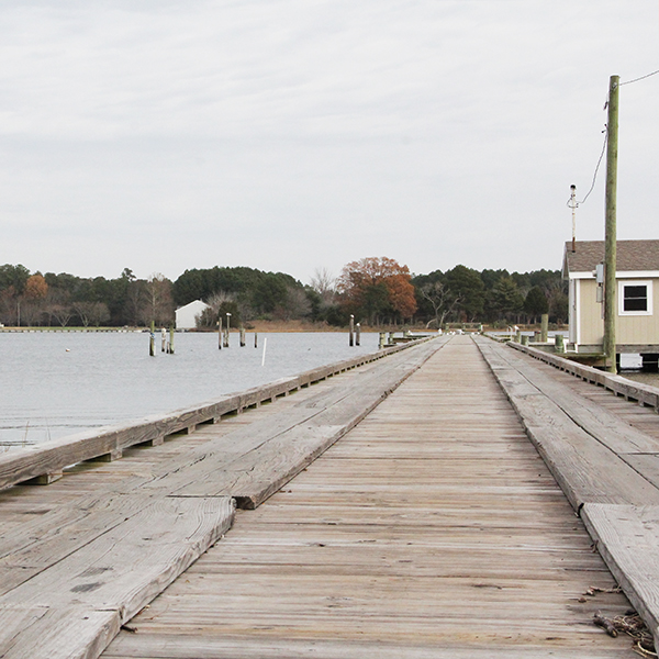 HARBORTON - IN BRIEF: A classic Eastern Shore bayside cove community on Pungoteague and Taylor Creeks, good for a stretch and a look around if time permits.ACCESS: A boat-ramp is open during daylight hours.
