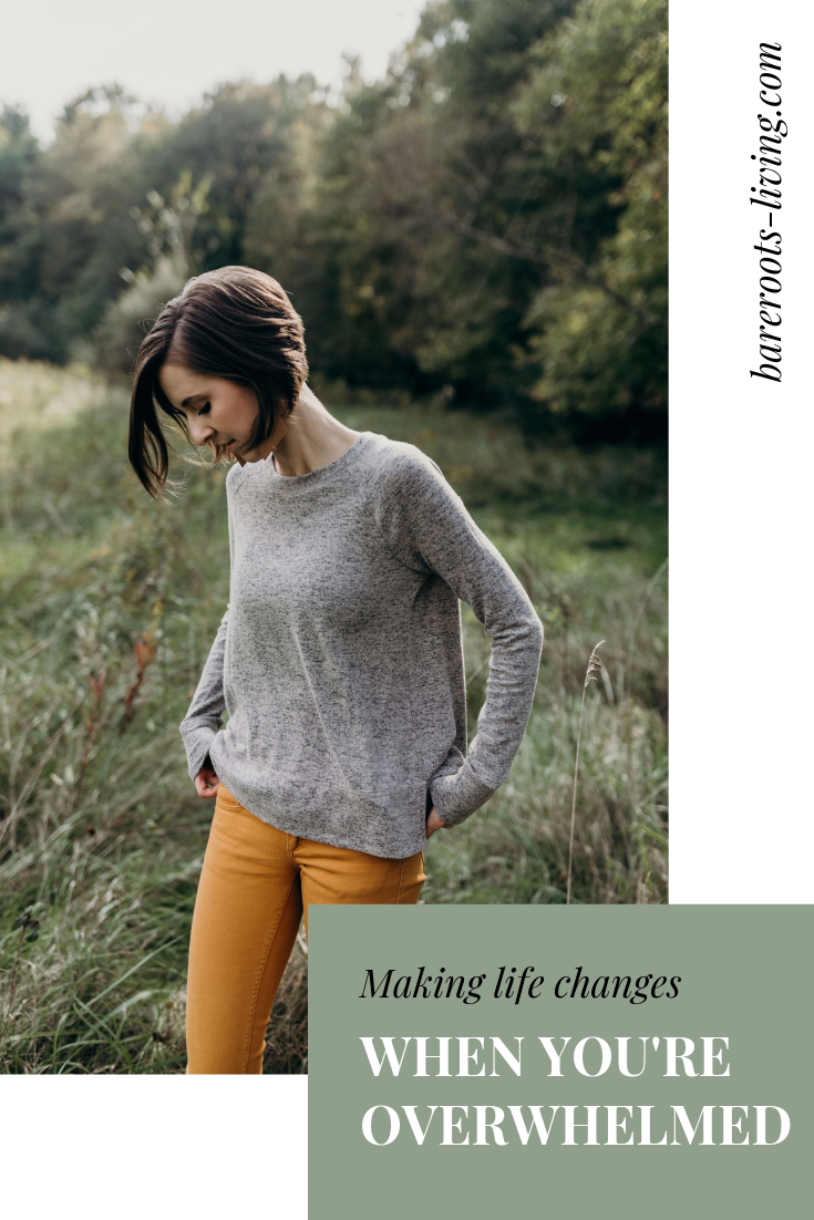 making life changes when you feel overwhelmed, bare roots living, wellness blog