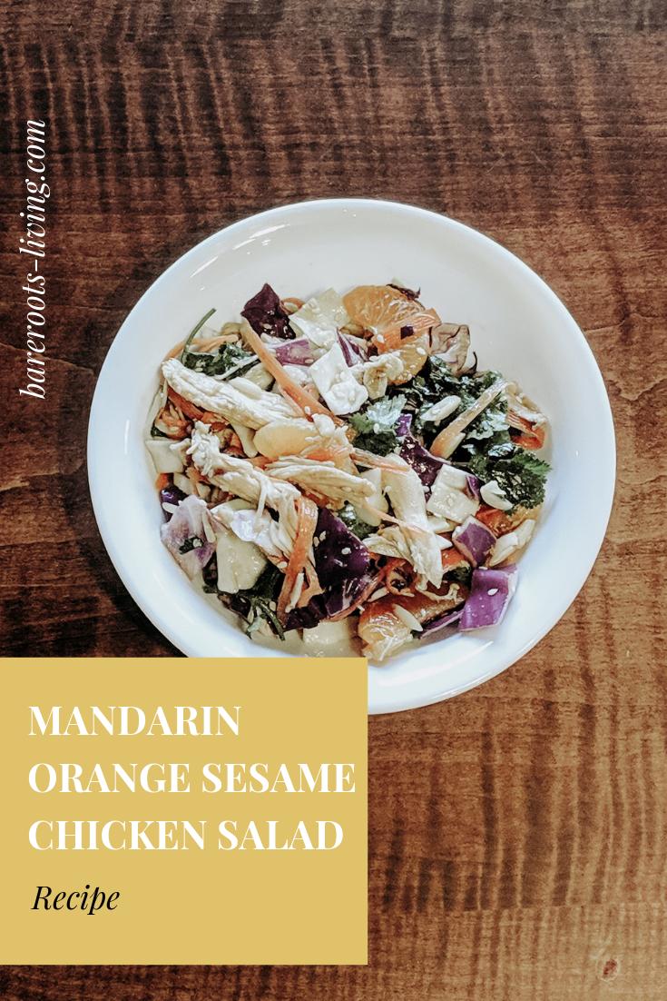 Sesame orange chicken salad recipe