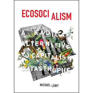 """2. Ecosocialism - By Michael Löwy, Haymarket BooksThe scale of the climate crisis is not something we can solve remotely through individual choices; a capitalist energy transition will not be a just energy transition. So how do we imagine democratic and just climate futures? I've been especially interested in new thinking from the left that advocates for a decarbonization of our energy system that prioritizes democratic control, the decommodification of energy, and decolonization. Other good reads in this space include """"Ecosocialism or Bust"""" by Thea Riofrancos, Robert Shaw, and Will Speck, and """"Five Principles of a Socialist Climate Politics"""" by Matthew Huber."""