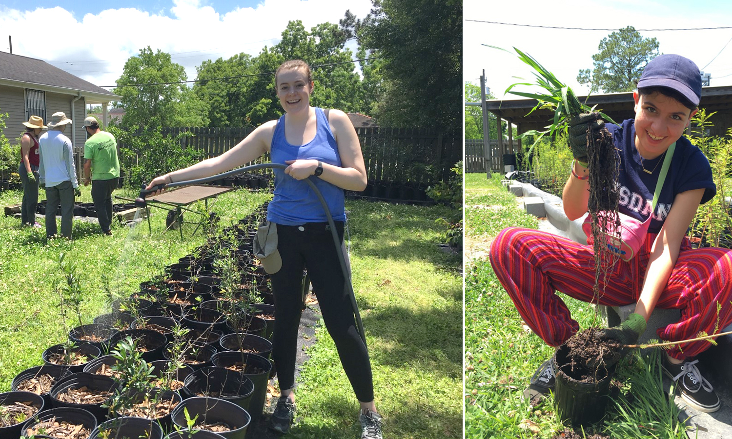 Riley Sayers (left) has found a good use for her long arms! Cami Fredericks (right) rescues a tree sapling from the massive root system of an invasive grass.
