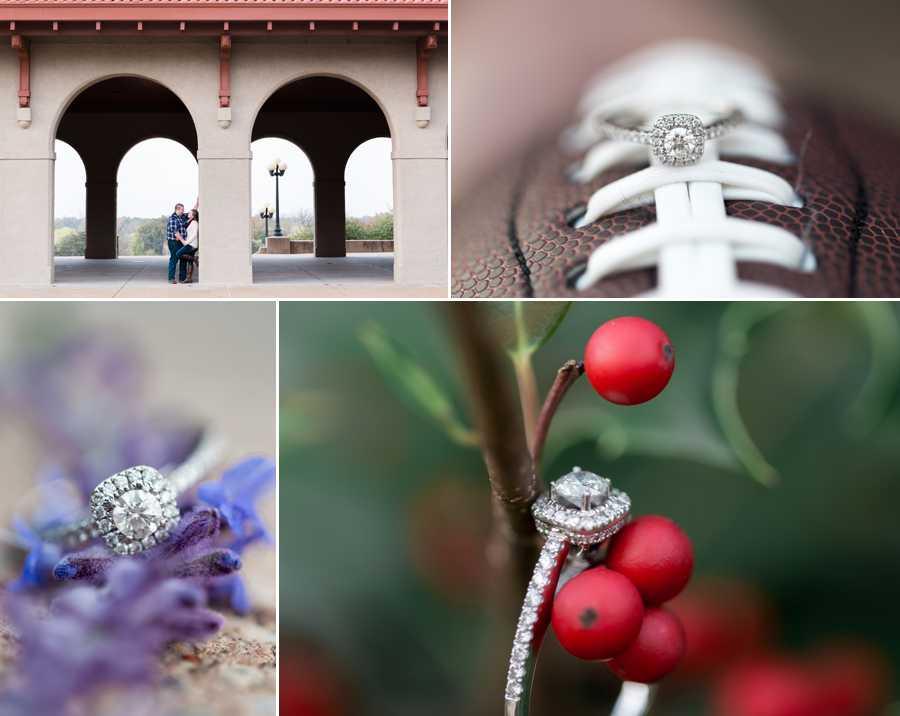 009St-Louis-Engagement-Photographer.jpg