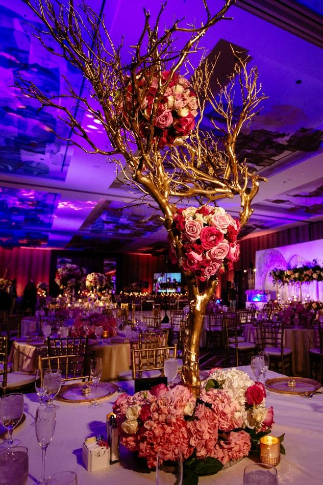 dallas-weddings-ashima-shivam-11.jpg