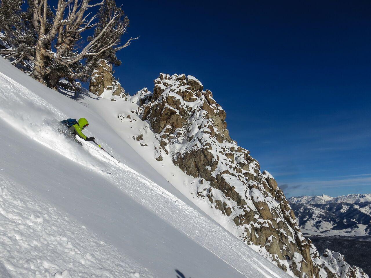 skiingdownhill.jpeg