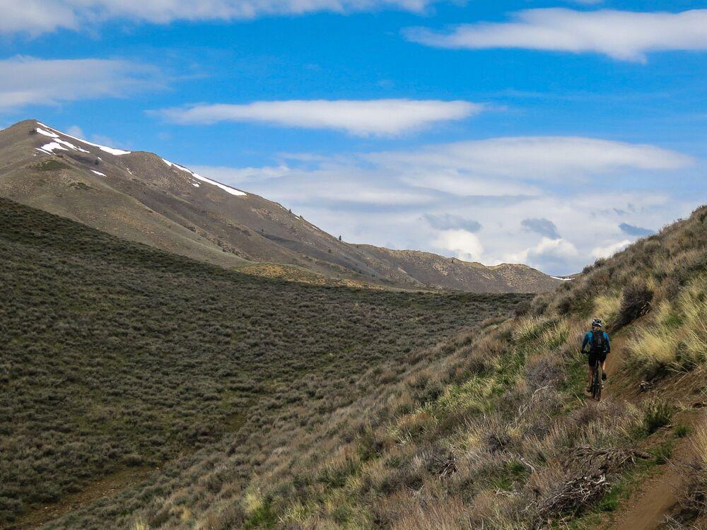 Mountain Biking.jpeg