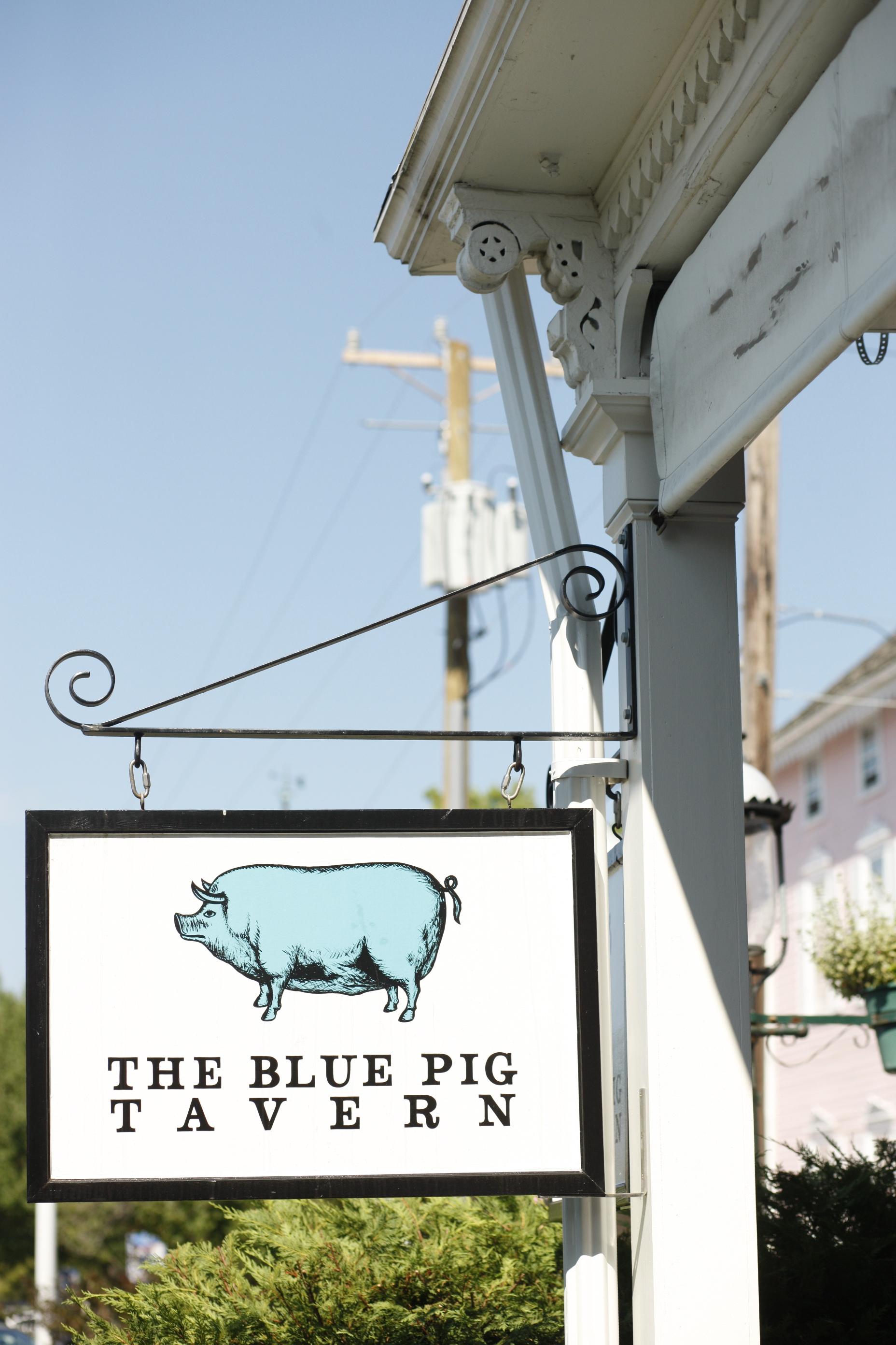 01_Blue Pig.jpg