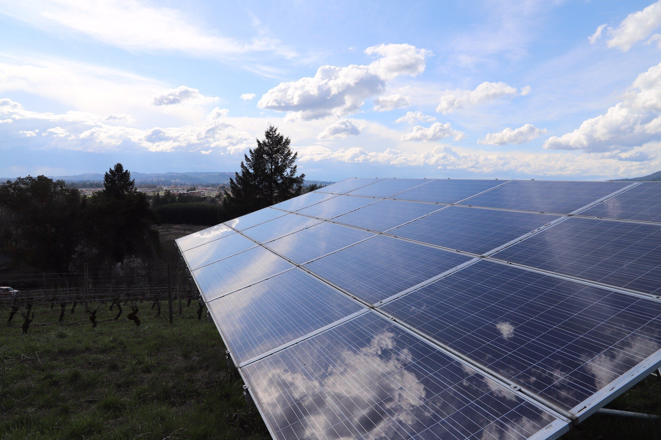 CHEM_B_Corp_Solar_Panels.jpg