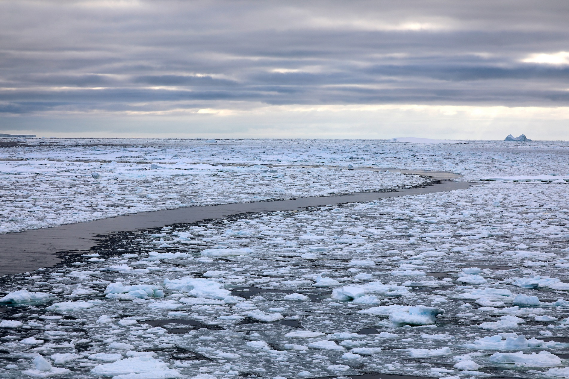 transit ship path through sea ice.jpg