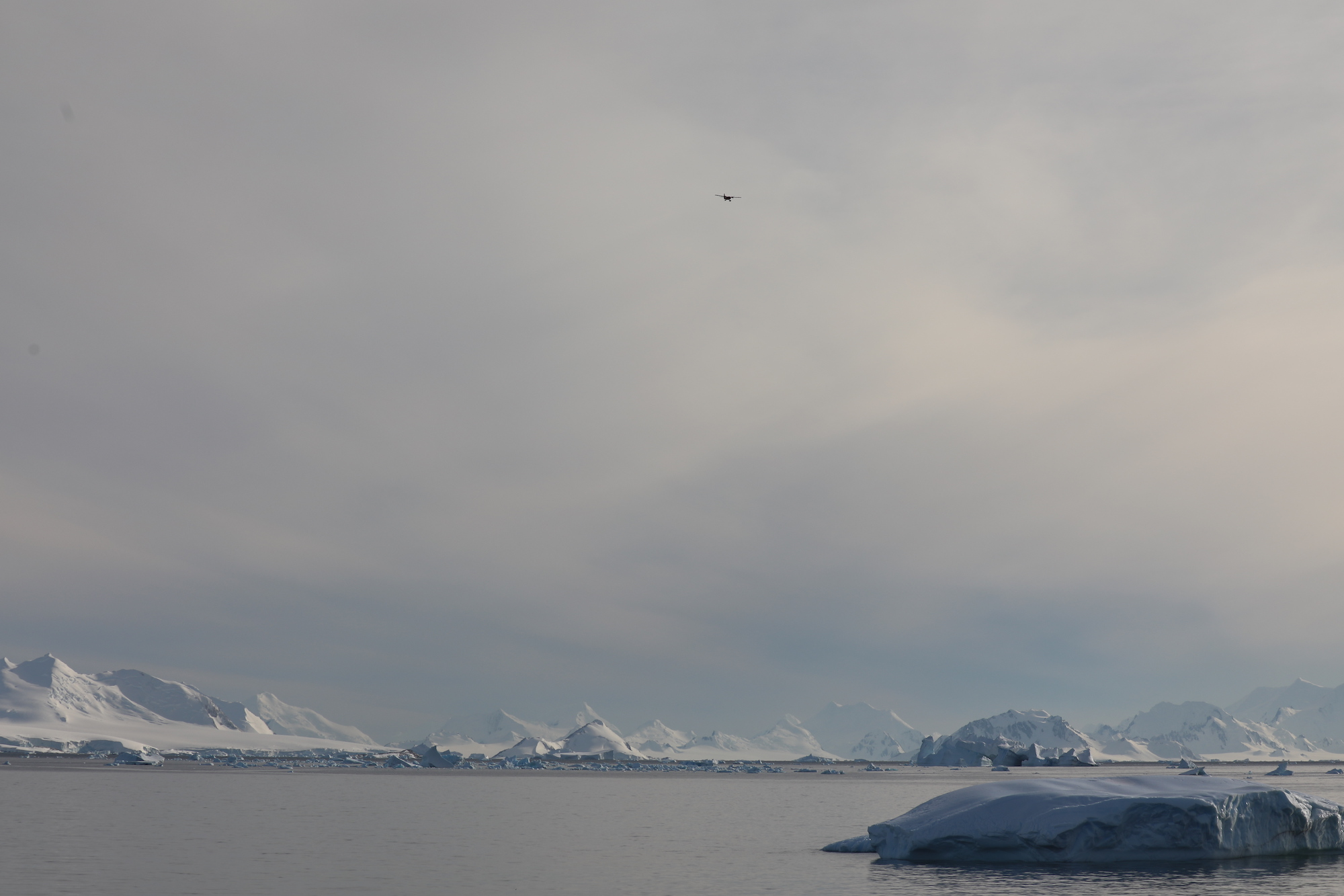 Twin Otter  inbound! These rugged aircraft are mainstays of Antarctic research.