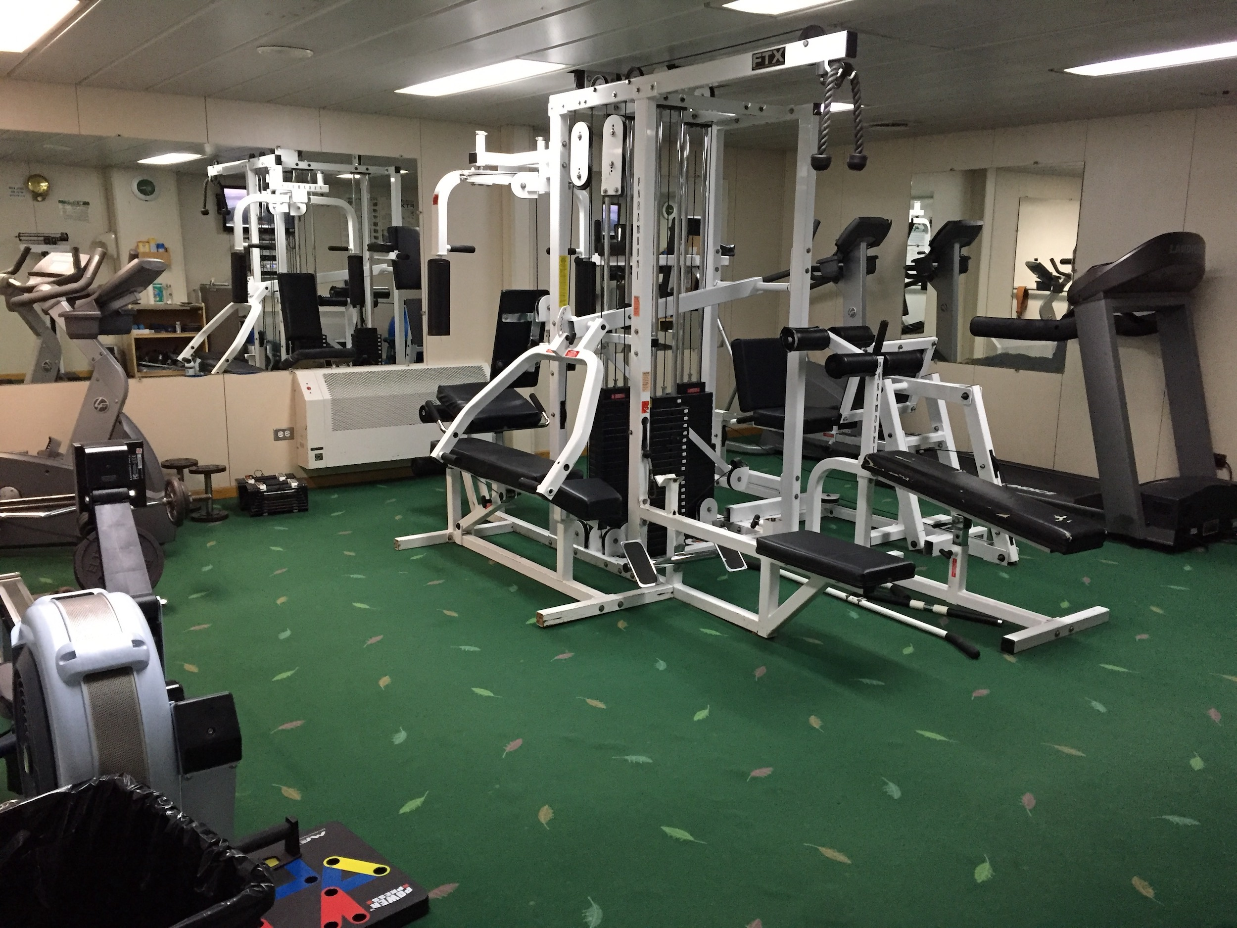 The Palmer's gym